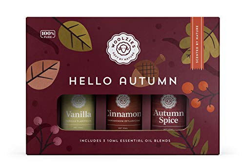 Woolzies Hello Autumn Set of 3 | Therapeutic Grade...