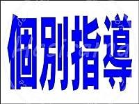 「個別指導(紺)」 ティンメタルサインクリエイティブ産業クラブレトロヴィンテージ金属壁装飾理髪店コーヒーショップ産業スタイル装飾誕生日ギフト
