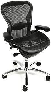 Sponsored Ad - Aeron Size B Fully Loaded Polished Base Office Chair (Renewed)