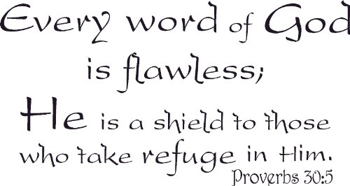 Proverbs 30:5, Vinyl Wall Art, Every Word of God Is Flawless a Shield to Those Who Take Refuge in Him