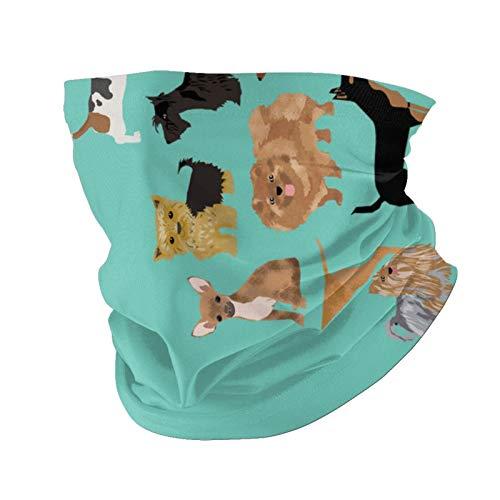 Ccycjasdkfewl 00 fundas de almohada para perros con protección UV para el cuello, pasamontañas, bufanda con bolsillo interior