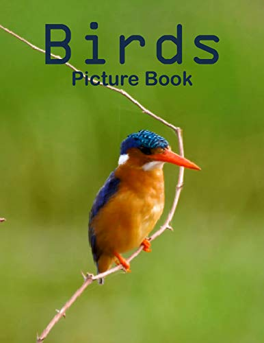 Birds Photography Photo Book: A picture book Gift for Human (Beautifull Birds Photo Book) V5