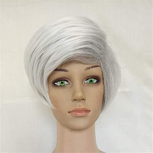 Der Femmes Synthétique Cheveux Perruque Marron Blonde Surligné Couches Raides Droites 9 Couleurs Disponibles (Color : Silver Grey, Stretched Length :