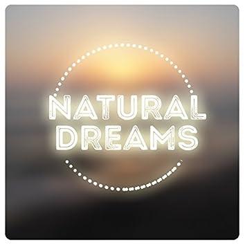 Natural Dreams