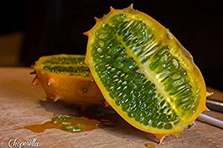 Alyf Market Cucumber Seed,Jelly Melon is Also Known as Horned Melon,