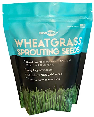 Wheatgrass Seeds | Non GMO | Grown in USA Wheat Grass Seeds | from Our Farm to Your Table (1 Pound)