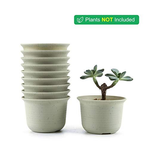 T4U 11CM プラスチック植木鉢 ラウンド 多肉植物 サボテン鉢 フラワーポット プランター容器 白 10個
