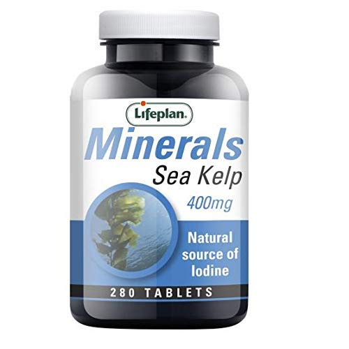 Lifeplan Minerals Sea Kelp Supplement 400mg Tablets - for Normal Cognitive (Brain) Function & Maintenance of Normal Skin (280 Tablets)