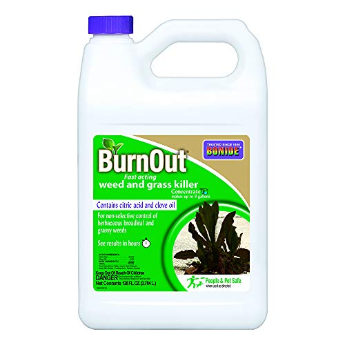 Bonide Burnout Weed Killer Concentrate