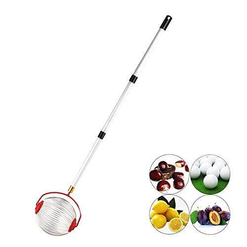 Multifunktion Rollsammler, Ohne Aufwand Fallobst, Walnüsse, Kirschen und Äpfel aufsammeln - Ideal auch als Greifer für Golfbälle, Tennisbälle