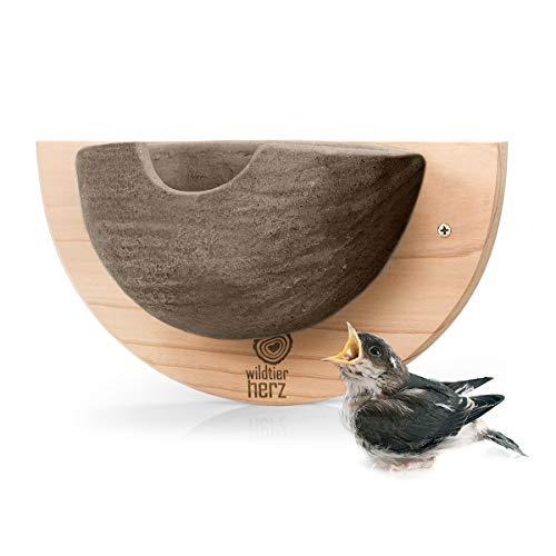 wildtier herz | 1er Schwalbennest, Nisthilfe Natur für Mehlschwalben aus Massiv-Holz und naturgetreuen Schlammerden - unbehandelt, wetterfest, Schwalben Nistkasten