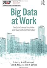 Big Data at Work (SIOP Organizational Frontiers Series)