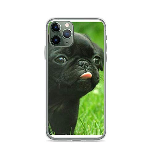 Phone Cover Case Compatible with iPhone Samsung Galaxy Black S10 Pug X 6 7 8 Plus Xs Xr 11 12 Pro Max Se 2020 Mini S9 S20 S21 Scratch Waterproof Accessories