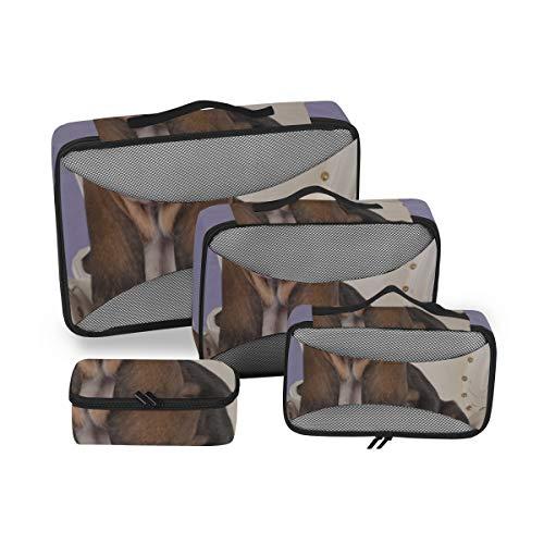 Organizadores de Viaje Bolsas de Embalaje Lindo Basset Blanco Tostado en el sofá Cubos de Embalaje Lindos Organizadores de Embalaje Viaje Organizador de Maleta de 4 Piezas Bolsa de Almacenamiento de