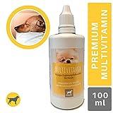 EMMA Multi Vitamine B Complex para Perros, Vitamina B1, B2, B6, B12,...