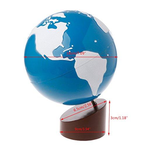 Menitn Globe Terrestre Plastique Montessori pour Enfant Couleur Assorties- Idéal pour Les écoliers