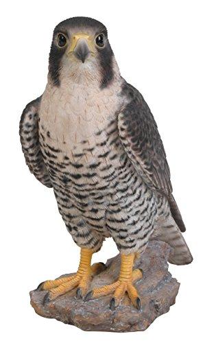Vivid Arts XRL-PFAL-B Peregrine Falcon Resin Ornament