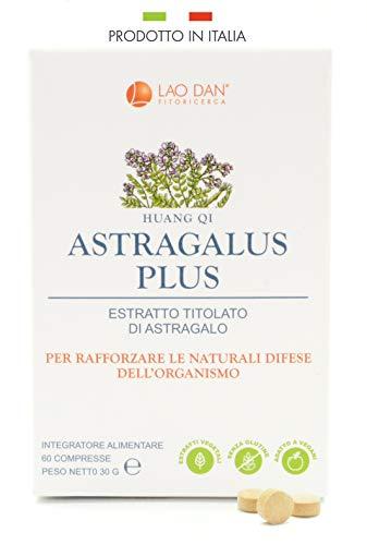 ASTRAGALUS PLUS da Fitoricerca Lao Dan | Estratto di Astragalo Premium Quality TITOLATO al 70% - 210mg polisaccaridi per compressa | Difese Immunitarie | PRODOTTO IN ITALIA