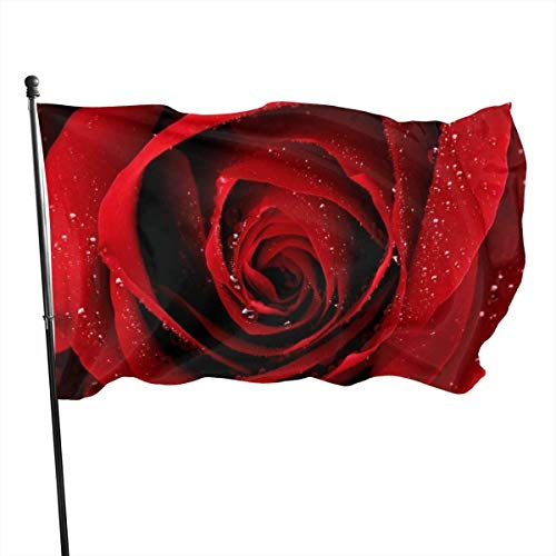 Viplili Banderas Outdoor Red Rose Garden Flag, Demonstration Flag - 3 X 5 Ft