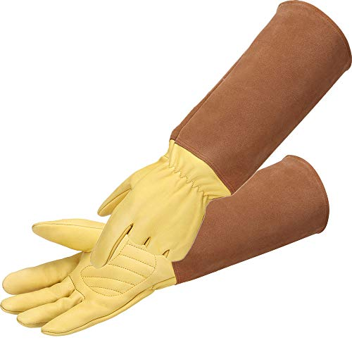 Rose Pruning Gloves for Men and Women - Thorn Proof Goatskin Leather Gardening Gloves - Elbow Length Long Gauntlets for Hands and Forearm Protection (Large, Yellow)