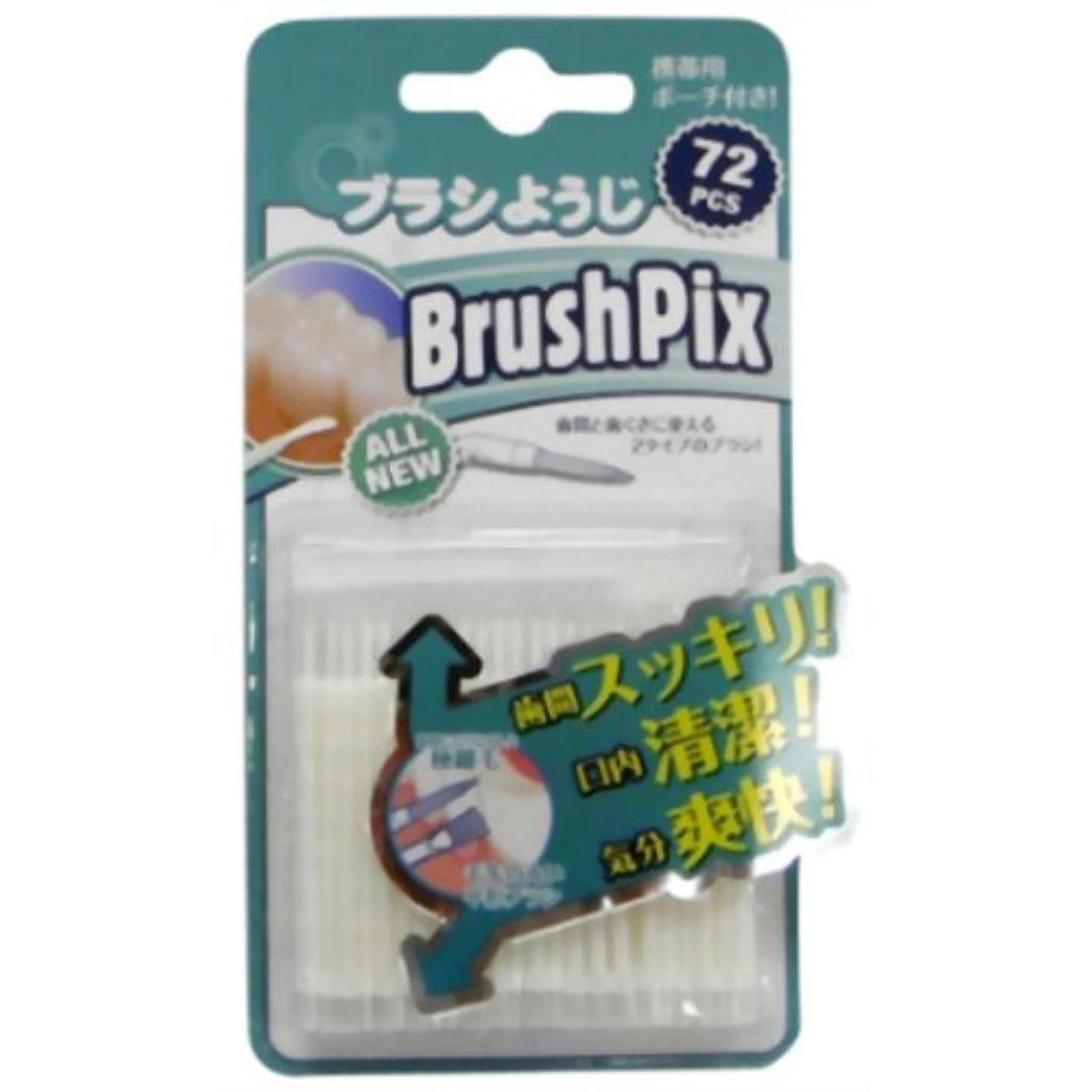 郵便番号船尾色PINO BrushPix BP-72 72本入