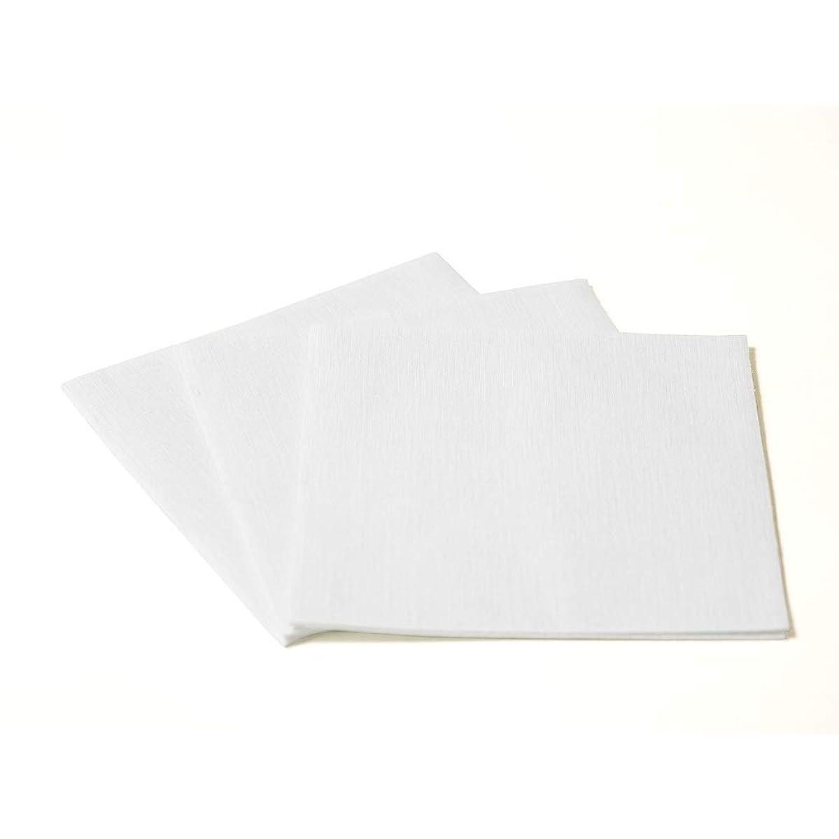 The Napkins Deluxe Classic Entertaining Napkin - Polar White Luxury Paper Napkin - Feels Like Cloth