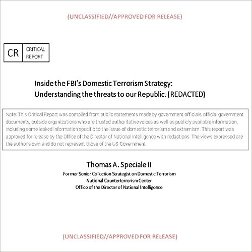 Couverture de Inside the FBI's Domestic Terrorism Strategy