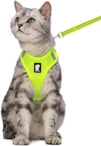 FDOYLCLC Cat Harness and Leash Set for Walking Escape Proof, Step-in Easy Control Outdoor Jacket, Adjustable Reflective Breathable Soft Air Mesh Vest for Small, Medium, Large Kitten