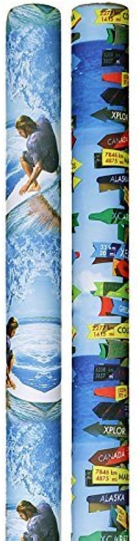 precio razonable Designer Noodle Pool Noodles - Surfer Curl and Beach Beach Beach Signs  oferta de tienda