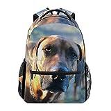 DXG1 Rhodesian Ridgeback - Mochila para perro para mujer, hombre, adolescente y niña, bolsa de escuela, bolsa de libros, suministros casuales