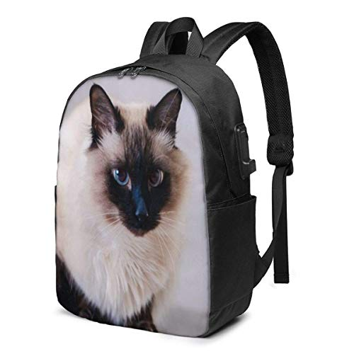Domestic Fur Animal Cat Bali Laptop Backpack Durable Laptops Backpack with USB Charging Port College School Computer Bag and Notebook Black