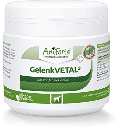 AniForte Gelenk-VETAL 3 Gelenkpulver für Hunde 250g - Naturprodukt mit Grünlippmuschel-Pulver, Kollagen aus Fischfang und Teufelskrallenwurzel, Natürliche Kraft für Gelenke und Bewegung