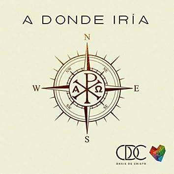 A Donde Iría (feat. Fabiola Pinillos)