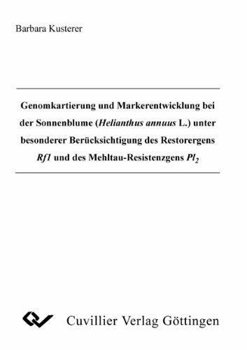 Untersuchungen zu Krankheitserregern an Dill (Anethum graveolens L.)