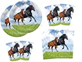 Juego de fiesta de caballos para 16 invitados, platos, vasos y servilletas, 52 piezas para fiestas de cumpleaños y celebraciones
