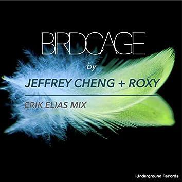 Birdcage (Erik Elias Mix)