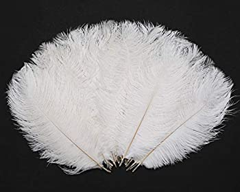 Hollosport 30PCS Bulk White Ostrich Feathers 10-12 Inches for Centerpieces Party Wedding Home Decorations Dream Catchers Vases Crafts Christmas Tree  White
