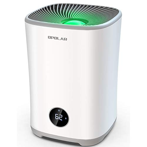 OPOLAR Evaporative Humidifier for Bedroom, Large Room Quiet Humidifiers with Filters, 0.79Gal Tank Lasts 10-17 Hours, Easy Top Fill, Mist-free, Timer, Auto Shut-Off, Sleep Mode, LED Touch Display