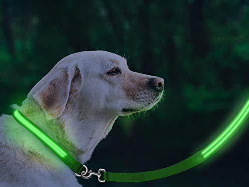 LED Dog Safety Leash