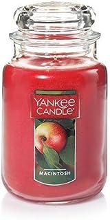 Yankee Candle Large Jar Candle Macintosh