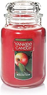 Yankee Candle Large Jar Candle Macintosh
