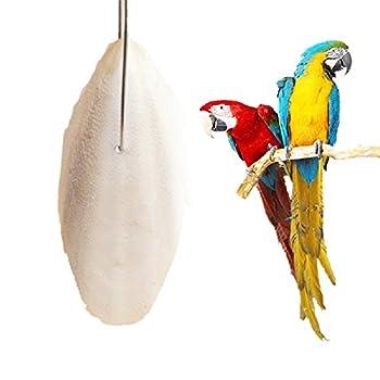 CHUN 1 Sac os de seiche Perroquet à mâcher Morsure Jouet Dents pour Animaux de Compagnie broyage Jouets Oiseaux Reptiles escargots dessalage Alimentaire Jouet de Formation de seiche