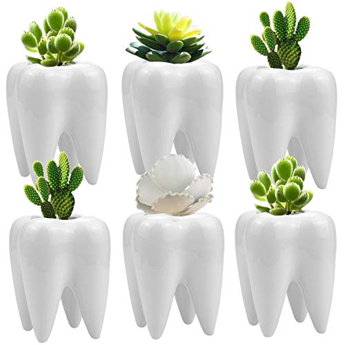 Teeth Ceramic Pots