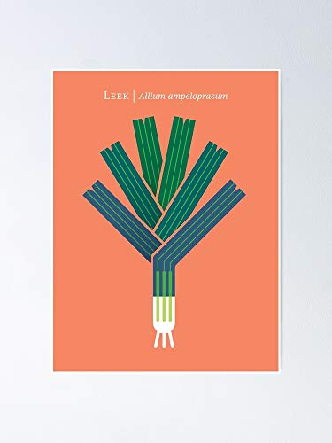 AZSTEEL Vegetable Leek Poster