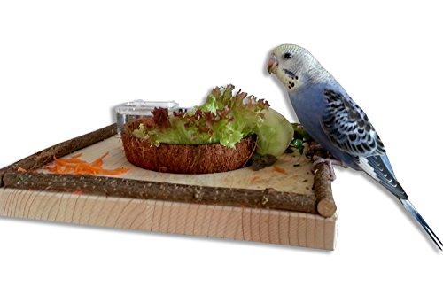 Sitzbrett mit Kokosschale Futternapf zum Herausnehmen. Pfiffiges Vogelspielzeug und Futterbrett!!