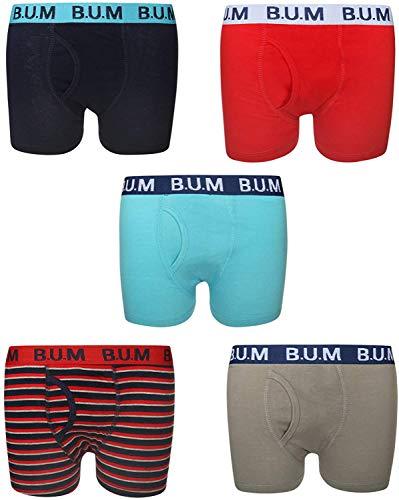 B.U.M. Equipment Boys 5 Pack Solid Boxer Briefs Underwear (Medium / 8-10, Blue/Red Stripes)