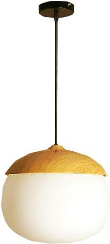 Plafonnier lampe à économie d'énergie en forme de boule en verre suspendu lampe suspension lampe simple American Land Design plafond lampe hauteur réglable fer métal suspendu hauteur réglable