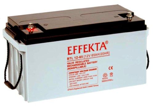 EFFEKTA BTL 12-65 / 12V 65Ah AGM Blei Akku Batterie
