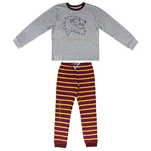 Artesania Cerda Pijama Largo Single Jersey Harry Potter