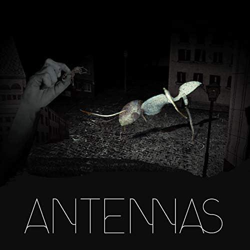 The Antennas